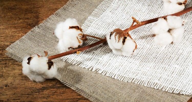 Viscose vs Cotton